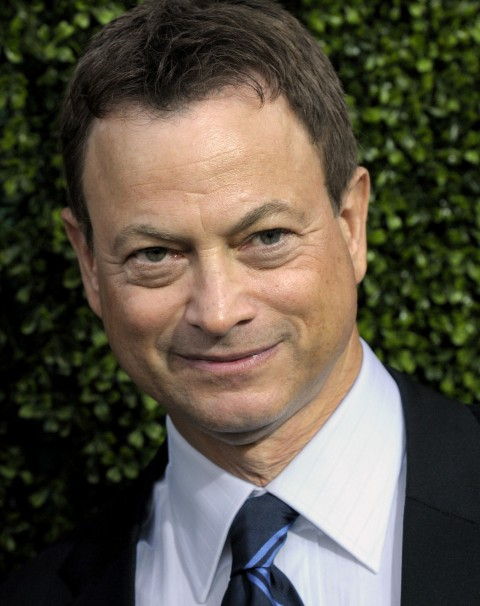 How rich is Gary Sinise?