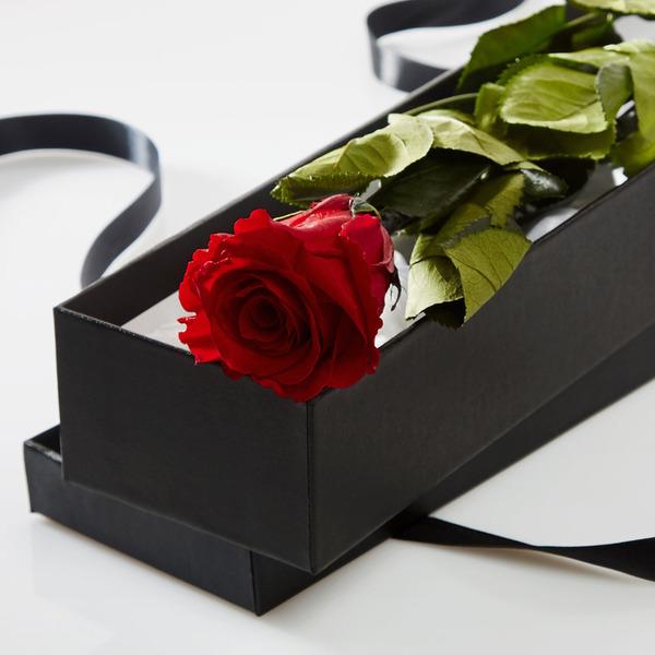 Joe DiMaggio Marilyn Monroe roses