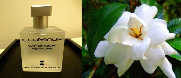 Kate Middleton's perfume White Gardenia Petals