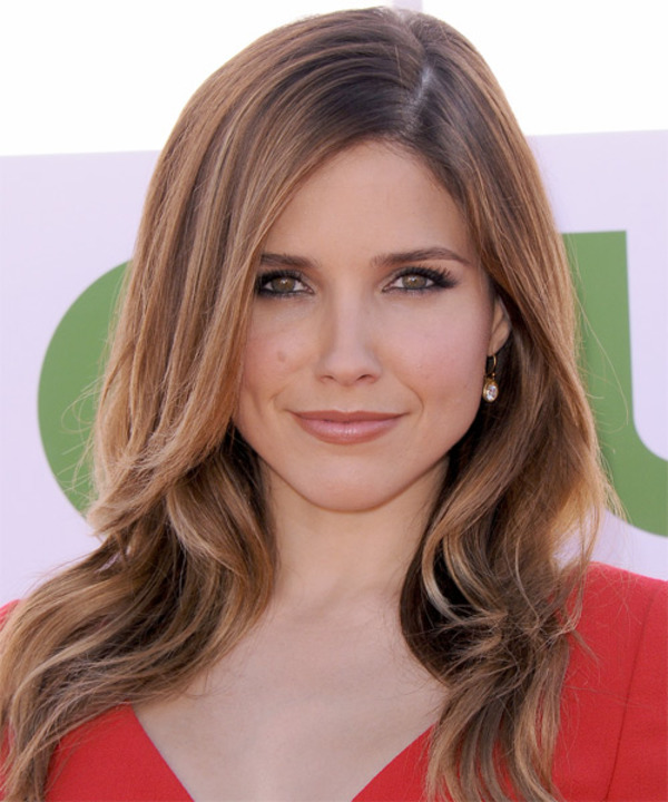 Sophia Bush biography