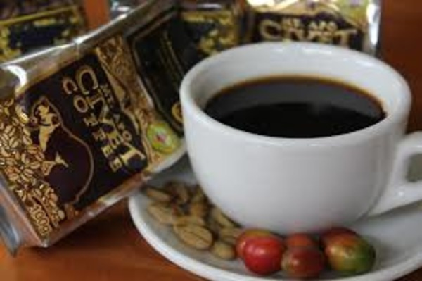 The most expensive civet cat coffee for $80 per cup