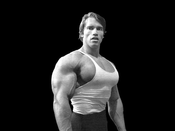 Arnold Schwarzenegger considered bodybuilding as the way to achieve his goal