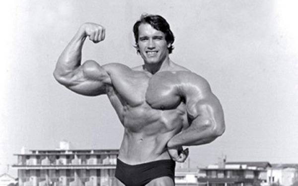 Arnold Schwarzenegger has made an enviable career