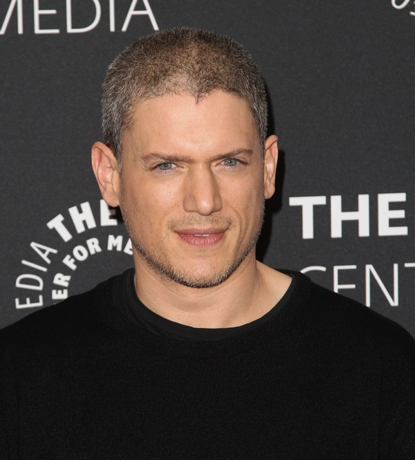 A famous gay Wentworth Miller