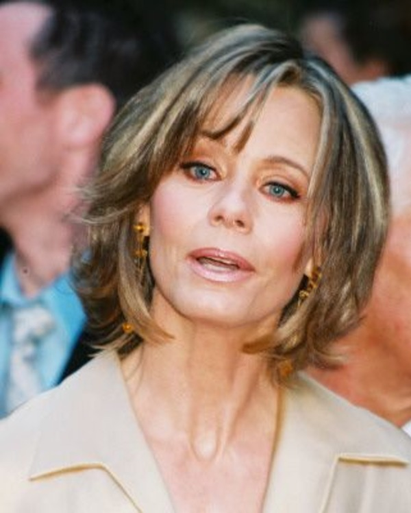 Susan Dey biography